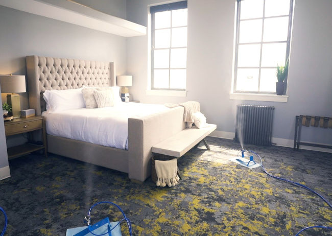 Mold Removal Service in Bedroom