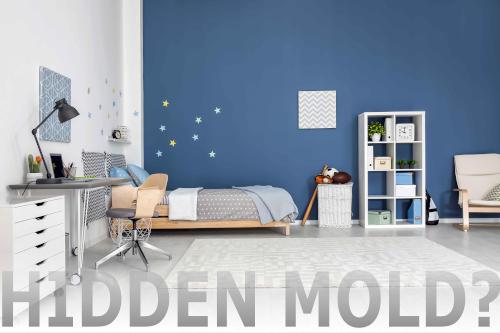 Hidden Mold