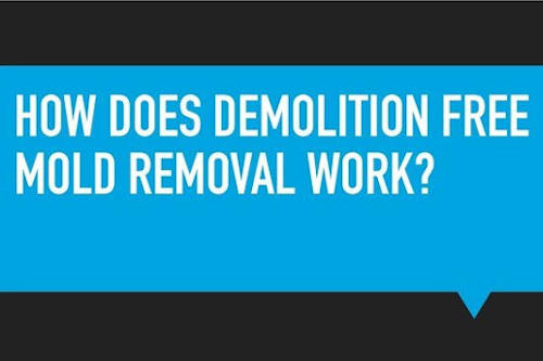 How does demolition free mold removal work 500x333